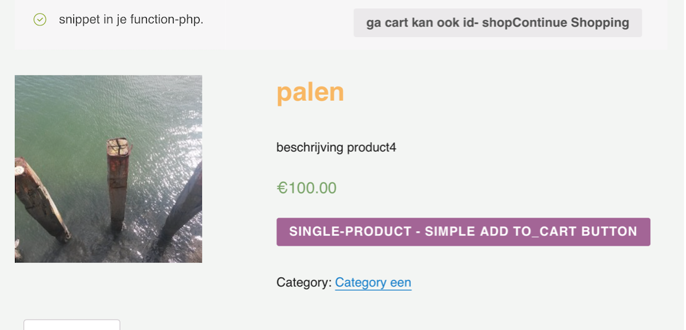 single-product-woocommerce